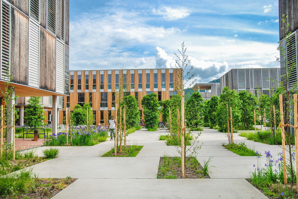 Able Services_campus grounds